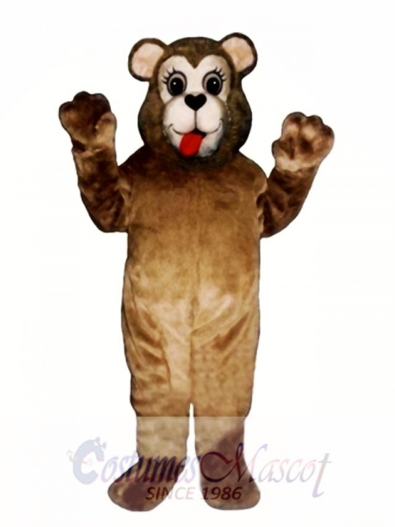 New Sweetheart Bear Mascot Costume