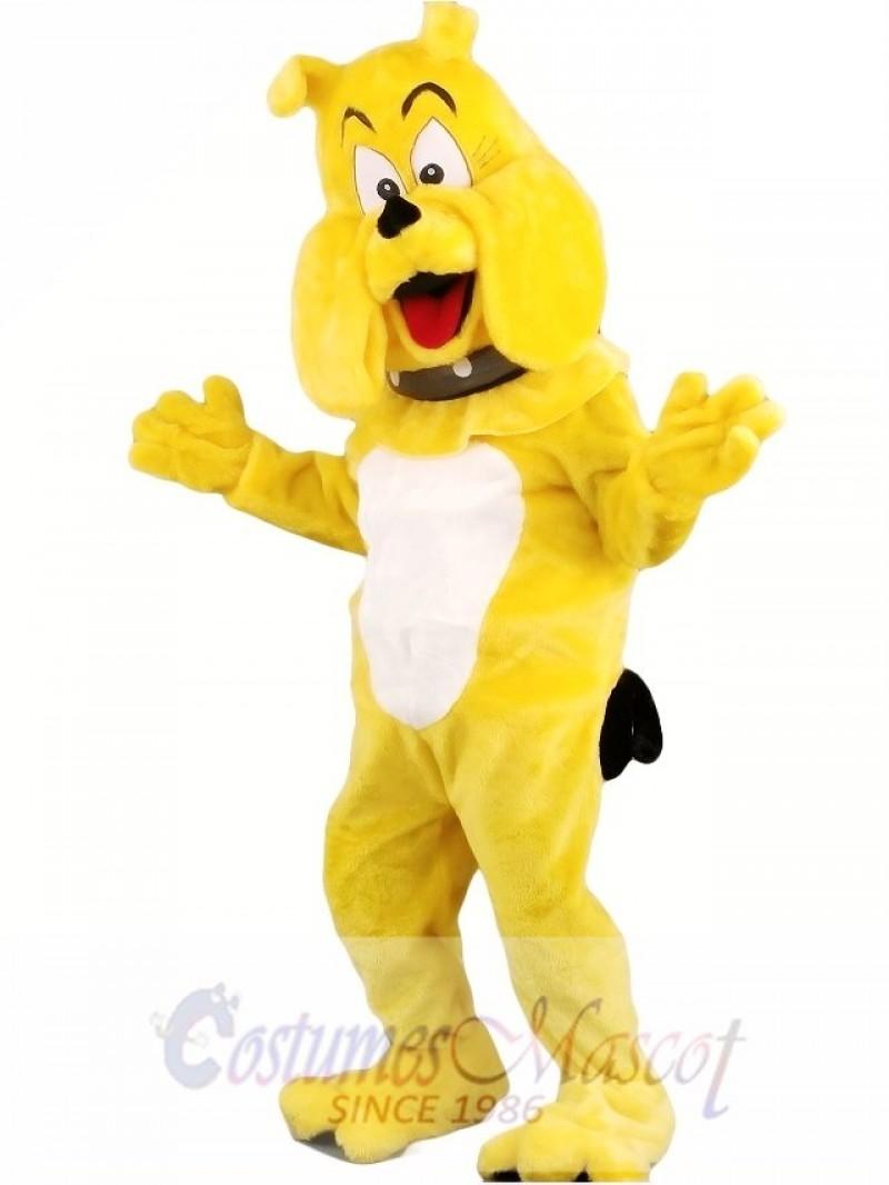 Cartoon Bulldog Mascot Costume