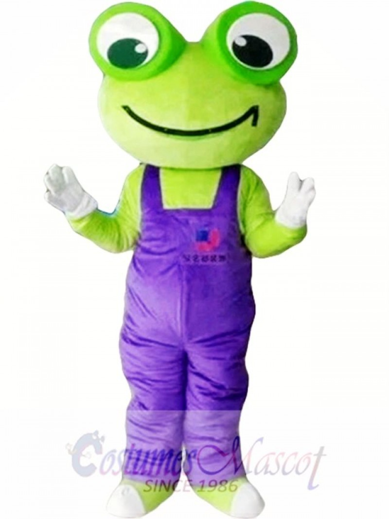 Cartoon Frog Mascot Costume