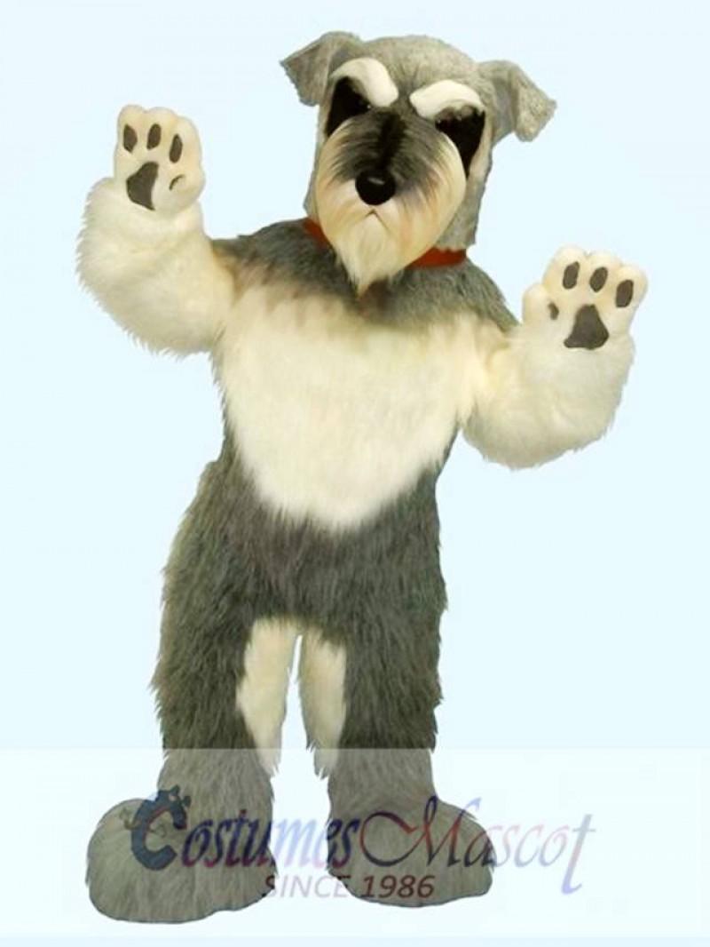 Cute Dog Mascot Costume