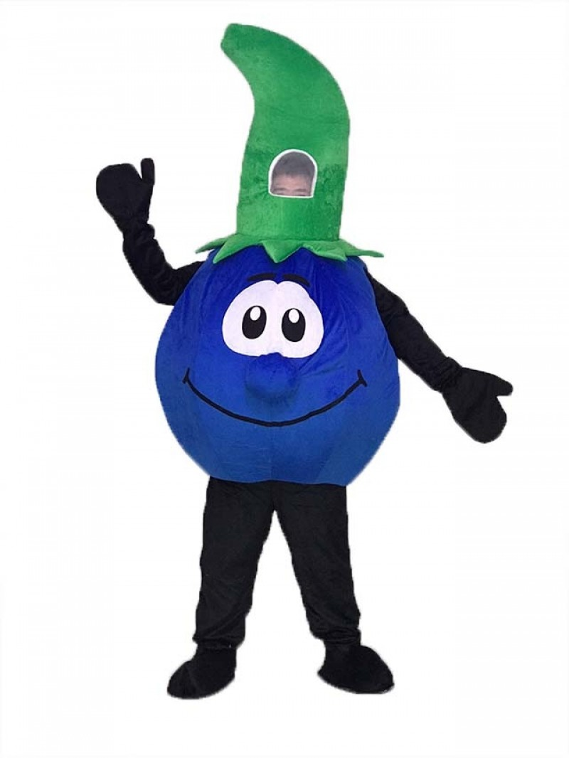 High Quality Bobby Blueberry Blue Berry Mascot Costume