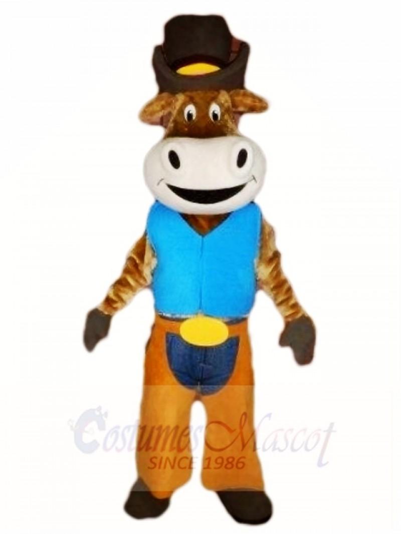 Ox Cattle Cowboy Animal