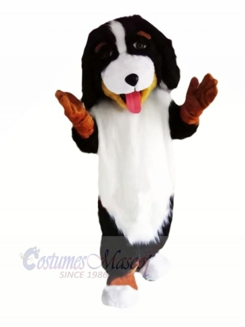 Cute Bernese Mountain Dog Mascot Costumes Animal
