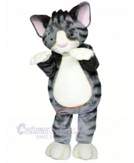Lightweight Grey Cat Mascot Costumes Cartoon