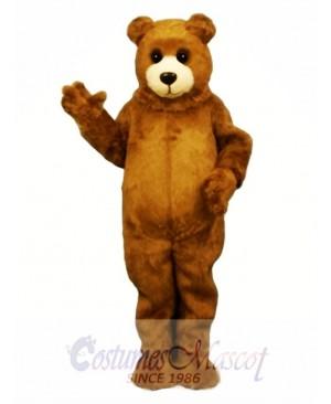 Baby Bruin Bear Mascot Costume