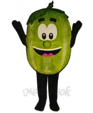 Wally Watermelon Mascot Costume