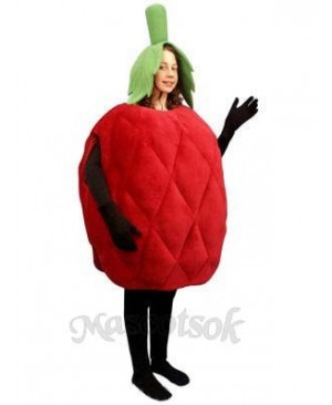 Raspberry Mascot Costume