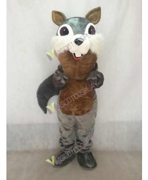 New Gray Squirrel Mascot Costume