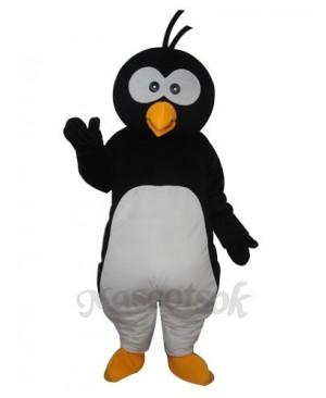 Round Head Penguin  Mascot  Adult  Costume