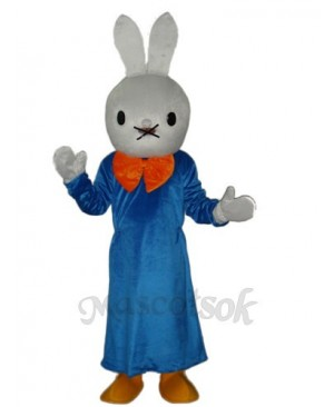 Easter Smart Rabbit Mascot Adult Costume