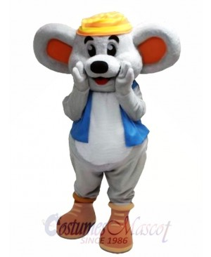 Cute Mouse Mascot Costume