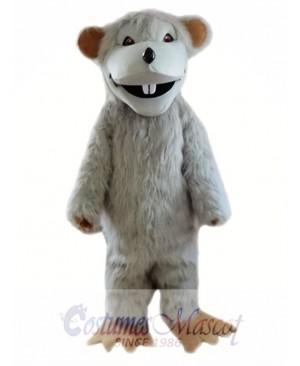 Gray Mouse Mascot Costumes
