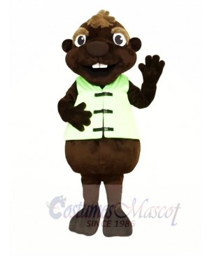 Chocolate Beaver Mascot Costumes