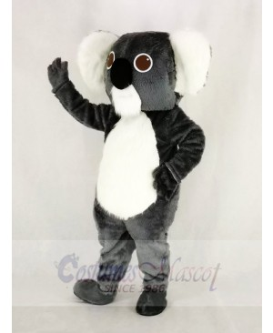 Cute Gray Koala Mascot Costume Cartoon