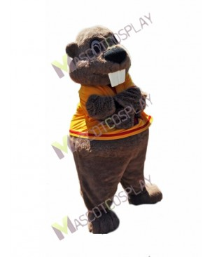 High Quality Adult Alex the Beaver Mascot Costume