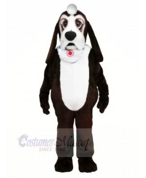 Basset Dog with White Scarf Mascot Costumes Animal