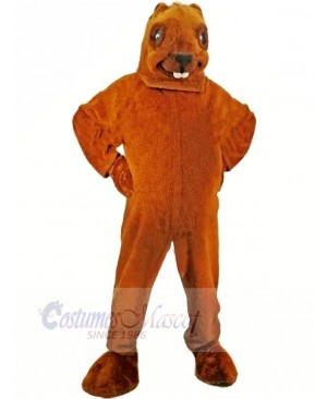 Brown Beaver Mascot Adult Costume