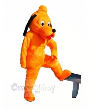 Cute Orange Dog Mascot Costumes Cheap