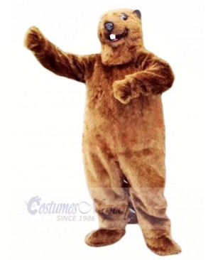 Best Quality Beaver Mascot Costumes Animal