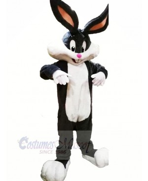 Cute Bunny with Long Ears Mascot Costumes Animal