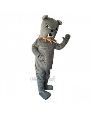 Cute Funny Bulldog with Collar Mascot Costume