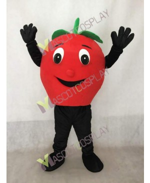 Big Red Apple Mascot Costume