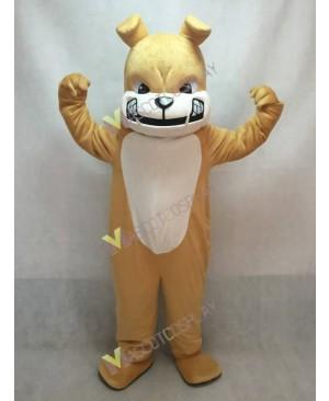 New Tan Bulldog Dog White Belly Mascot Costume