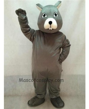 High Quality Vivid Gray Squirrel Mascot Costume