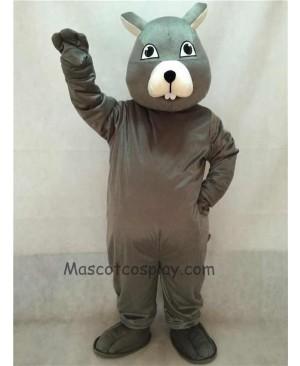 High Quality Vivid Gray Squirrel Mascot Costume