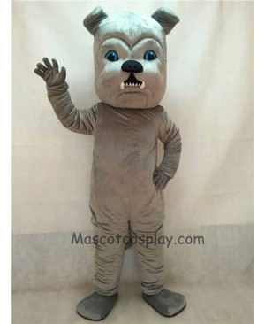 High Quality Vivid Grey Bulldog Dog Mascot Costume