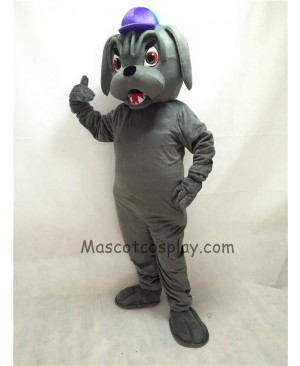 Cute Grey Bulldog with Collar & Purple Hat Mascot Costume