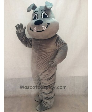 Gray Tuffy Bulldog Mascot Costume