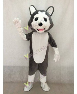 Realistic Adult Dark Gray Wolf Dog Mascot Costume