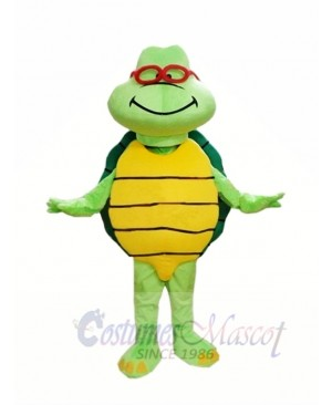 Cheap Green Turtle Custom Mascot Costumes
