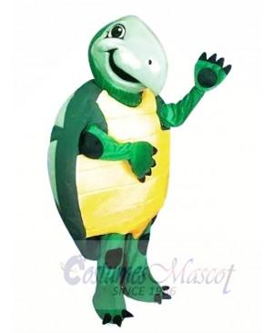 High Quality Turtle Mascot Costumes