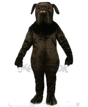 Cute found land Dog Mascot Costume