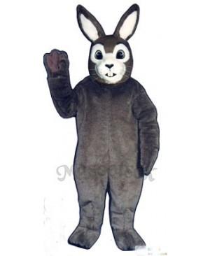 Easter J.R. Bunny Rabbit Mascot Costume