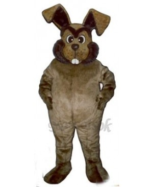 Easter March Hare Bunny Rabbit Mascot Costume