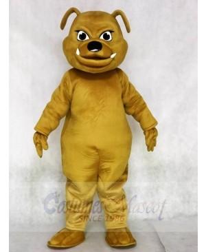 Brown Bulldog Animal Mascot Costumes