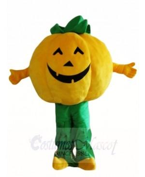 Pumpkins Plant Mascot Costumes Vegetable