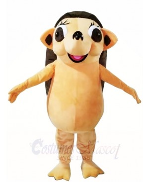 Hedgehog Mascot Costumes Animal