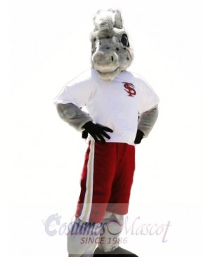 Sport School Horse Mascot Costumes Animal