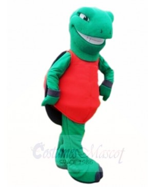 Green Terrapin Tortoise Turtle Mascot Costumes Sea