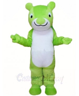 Green Squirrel Mascot Costumes Animal