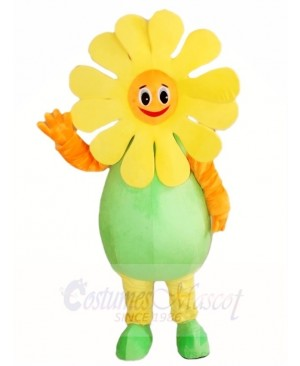 Sunflower Mascot Costumes Plant