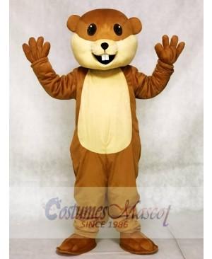 Benny Beaver Mascot Costumes Animal