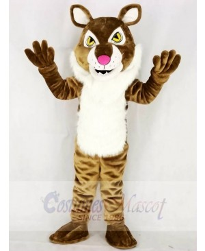 Light Brown Wildcat Bobcat Mascot Costumes Animal