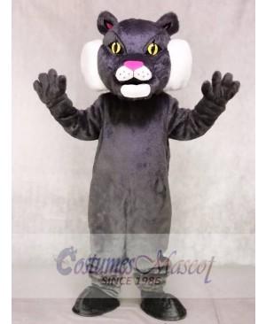 Cute Gray Bobcat Cat Mascot Costumes Animal
