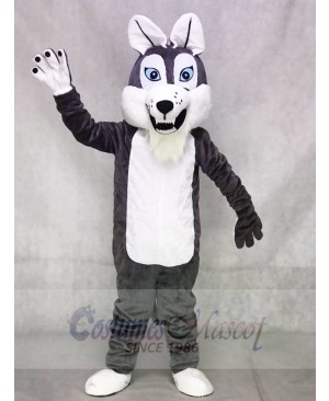 Grey Gray Long-haired Wolf Mascot Costumes Animal