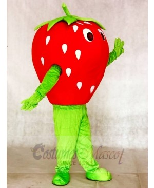 Red Strawberry Mascot Costumes Fruit